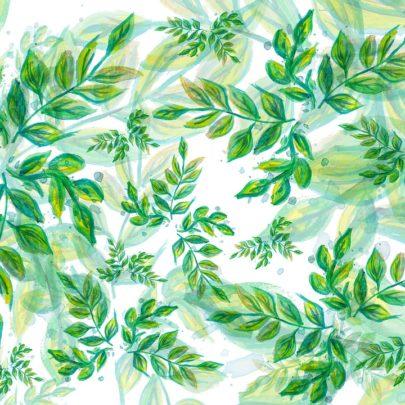 leaves-3765437_960_720