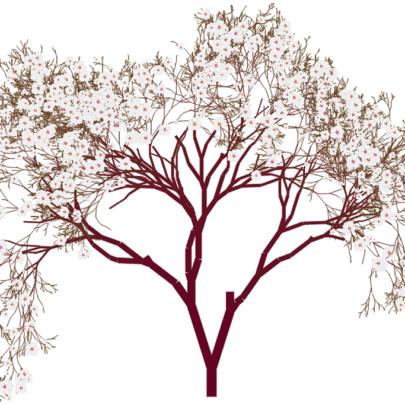 tree-46907_960_720