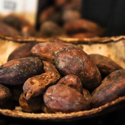 cacaobean-4000306_960_720